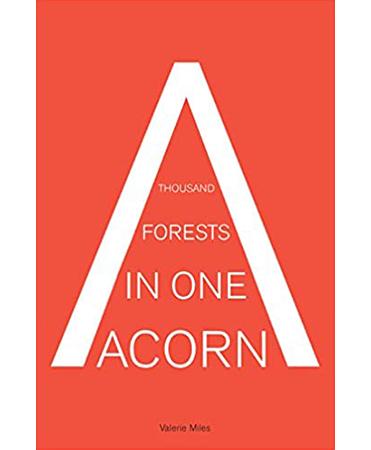 A-thousand-forests-in-one-acorn